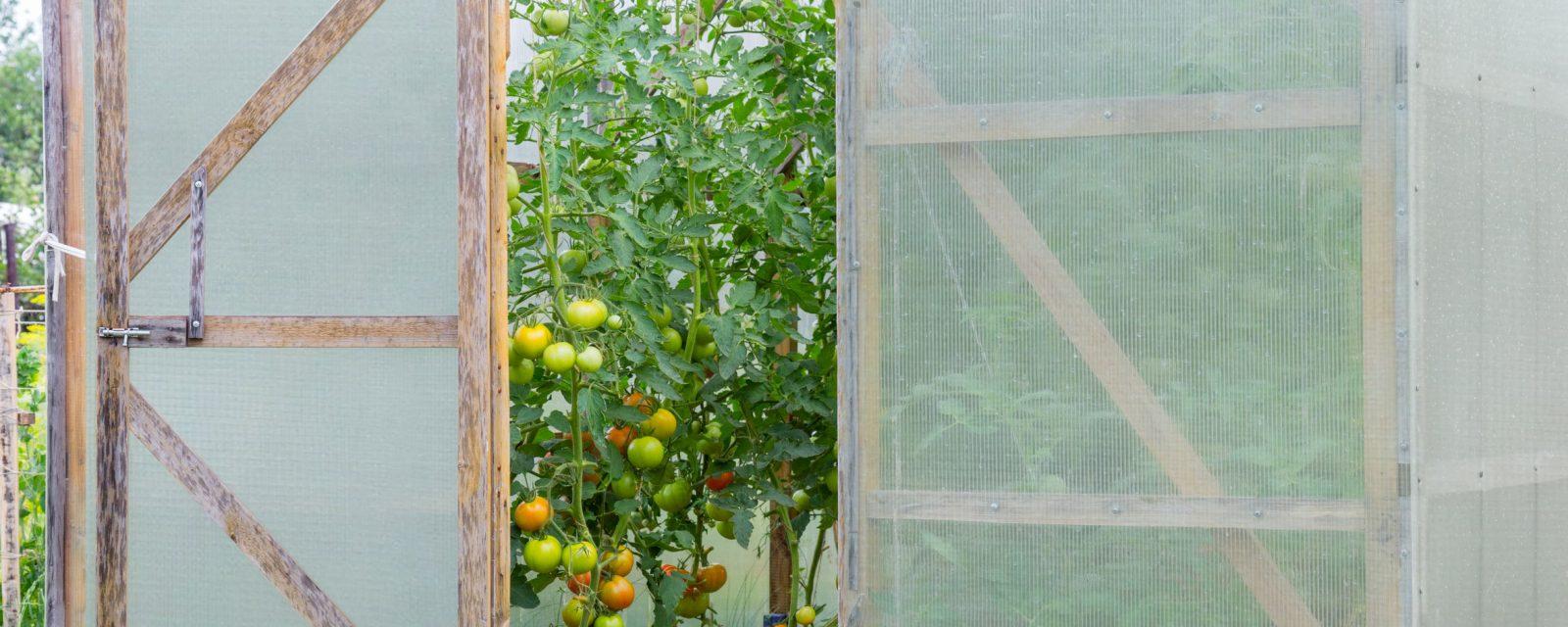 Grid film on greenhouse