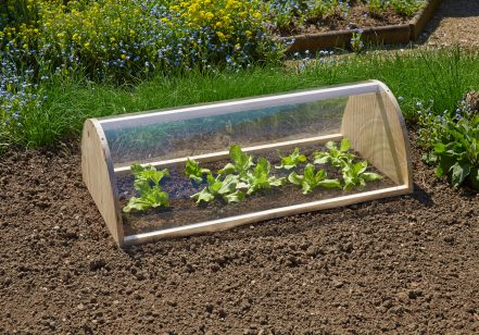 Cold frame with glazing foils